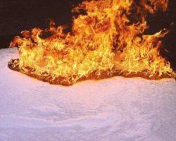 Fire Protection Support - Richard Hoyer - Brandbeveiliging